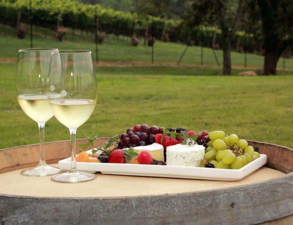 Discovering Virginia Wine