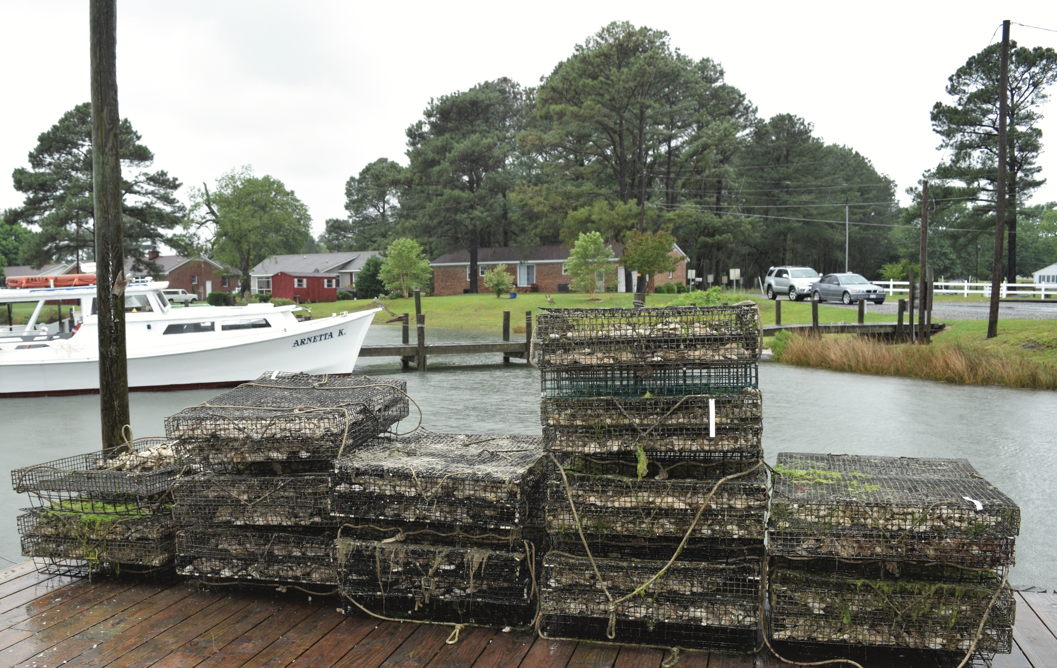 oyster cages, Virginia oyster country, Topping