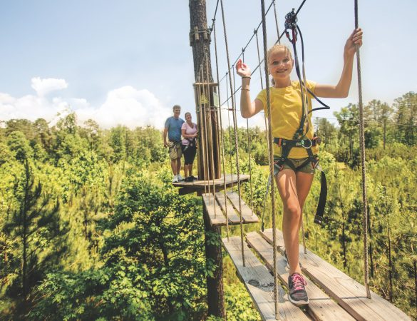 Zipline Courses Throughout Virginia are High on Thrills
