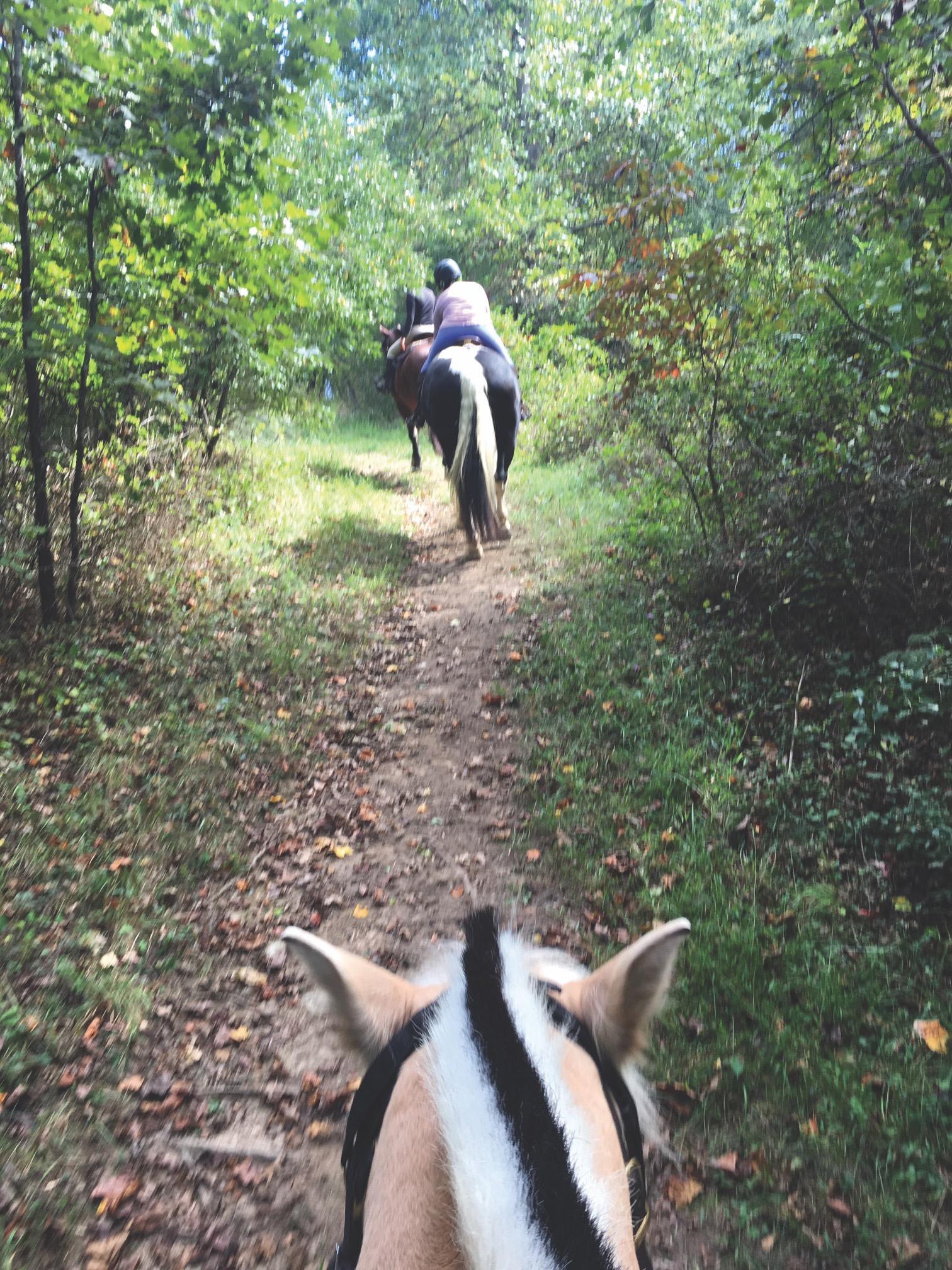 horeseback riding