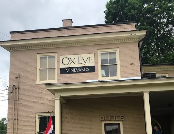 Ox-Eye Vineyards