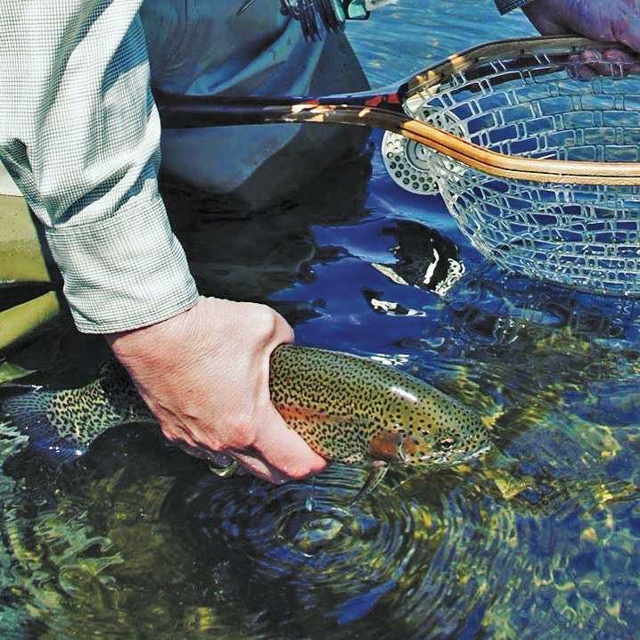 glamping and trout fishing