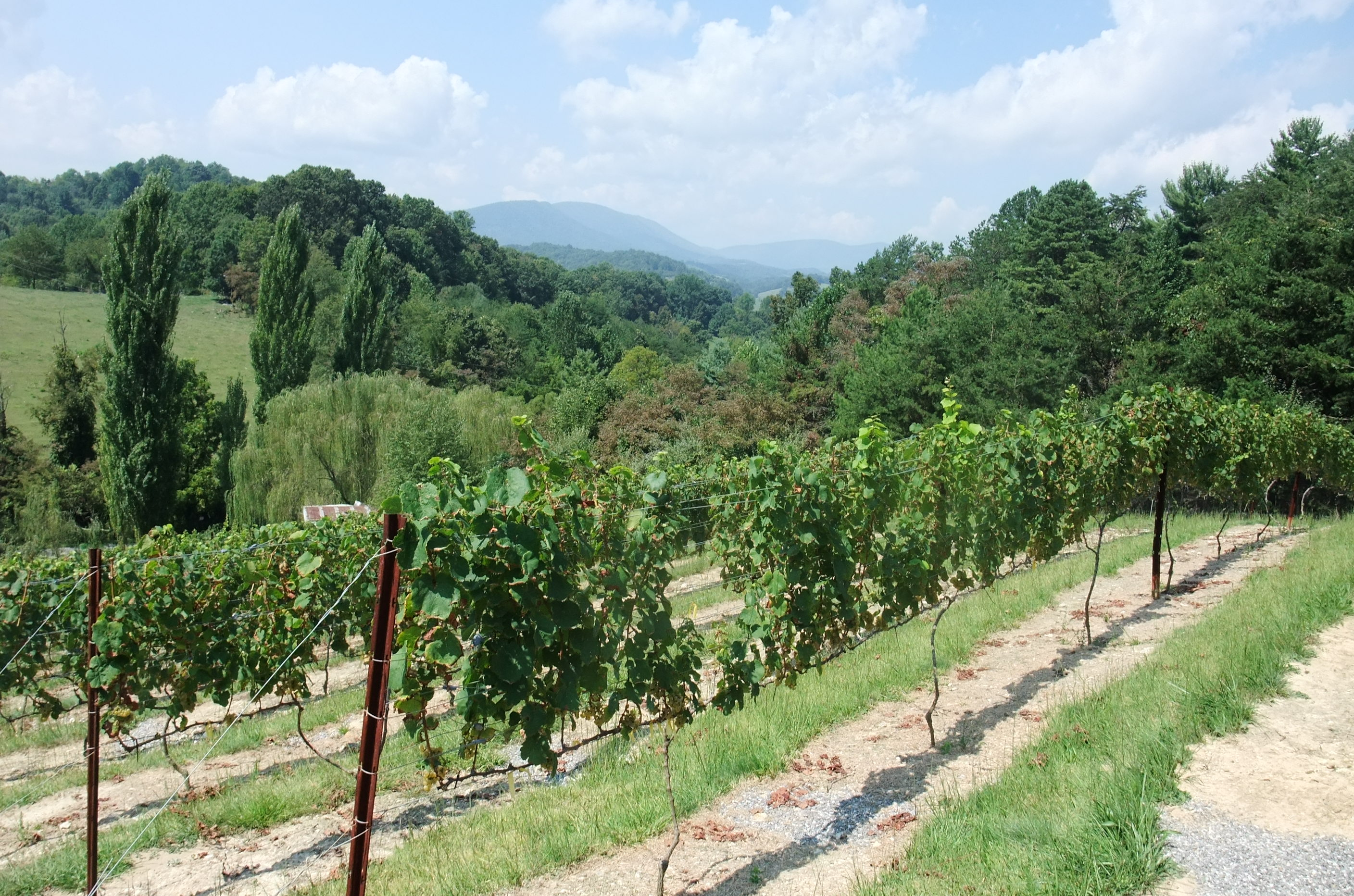 Giles County, JBR Vineyards & Winery