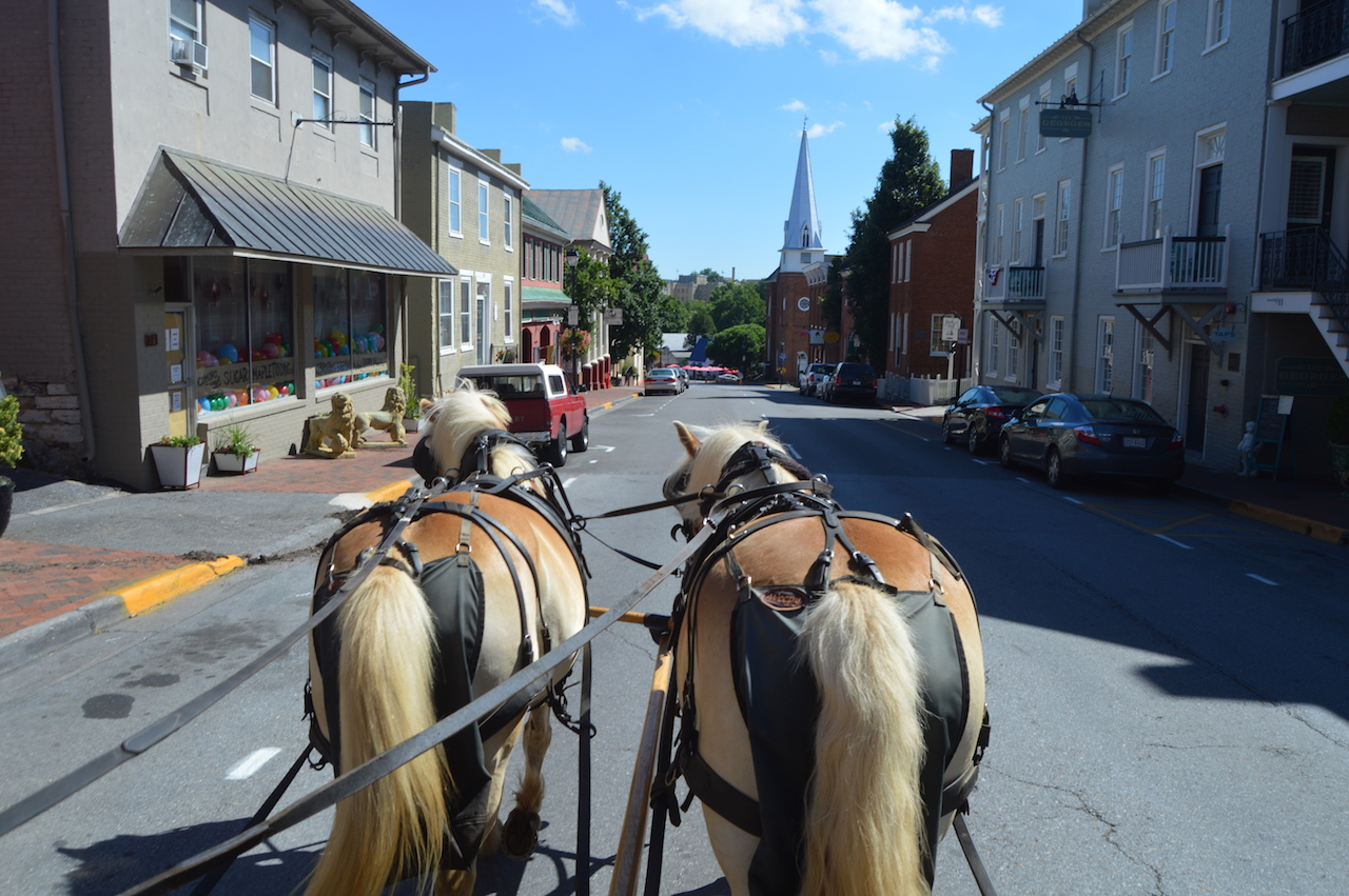 Horse Carriage tours, Lexington