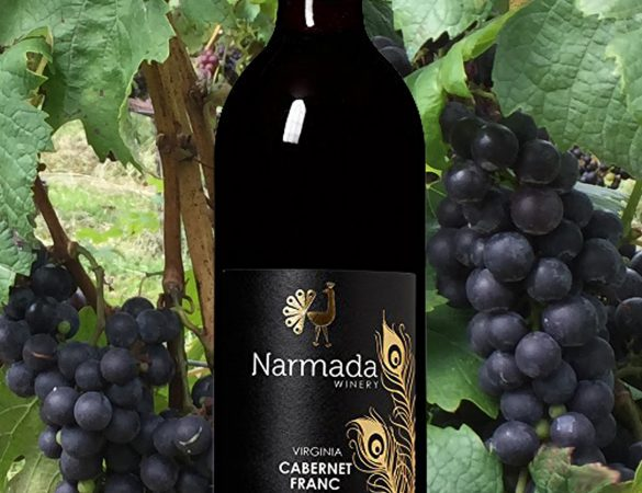 Narmada Winery Wins Best Of Show At Wine Competition