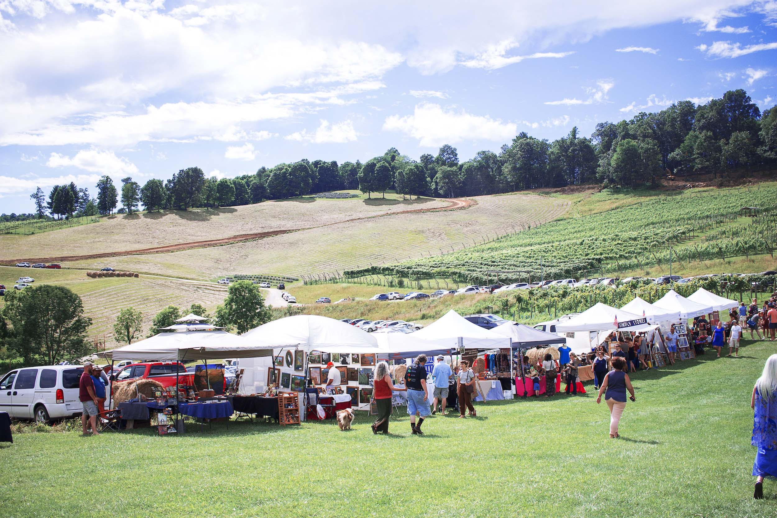 Beliveau Estate Winery Hosts Lavender Festival - Savor Virginia