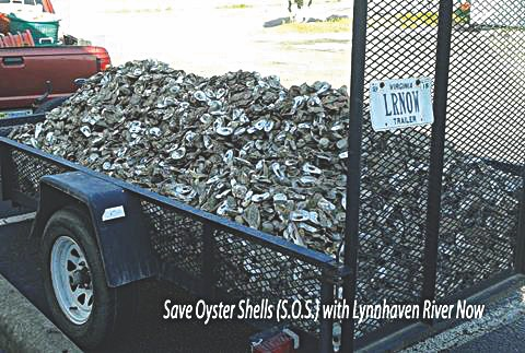 Save Oyster Shells, Lynnhaven River Now
