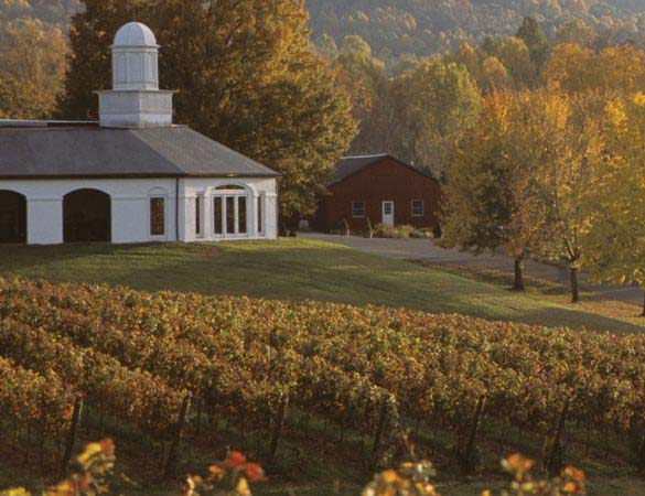 Barboursville Wine Wins Best in Show