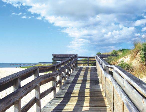 The Eastern Shore Offers History, Wildlife and Seafood Galore